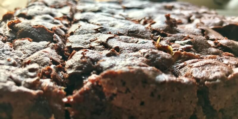 Dark Chocolate & Rhubarb Brownies
